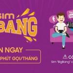 Thông tin về sim khuyến mãi Bigbang mạng Viettel